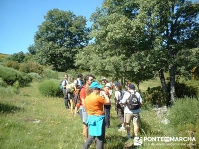 Ruta Lago de Sanabria - trekking laguna de sotillo; excursiones cerca madrid